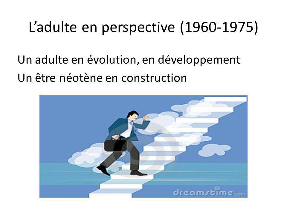 Ladulte en perspective (1960-1975) Un adulte en évolution, en développement Un être néotène en construction