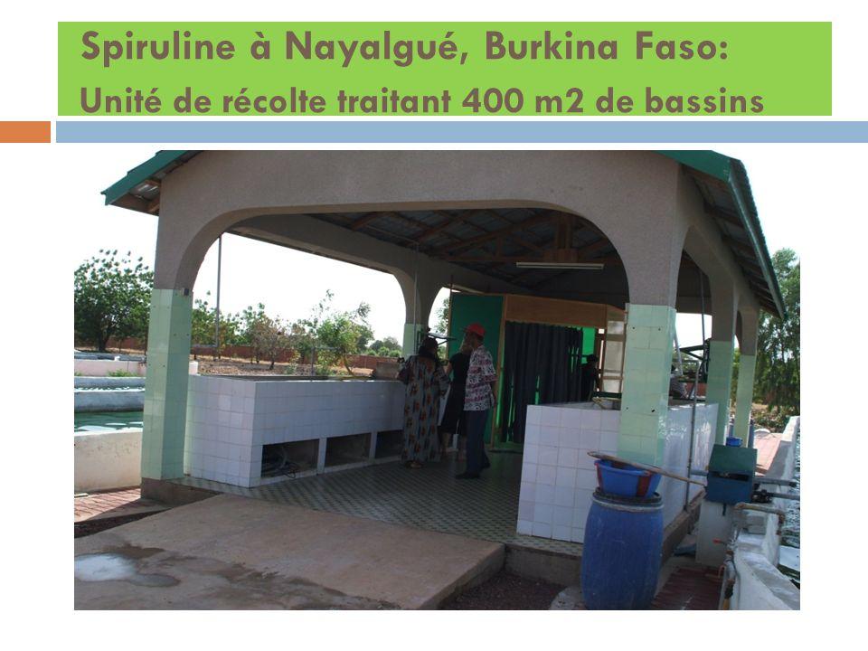 Spiruline à Nayalgué, Burkina Faso: Unité de récolte traitant 400 m2 de bassins