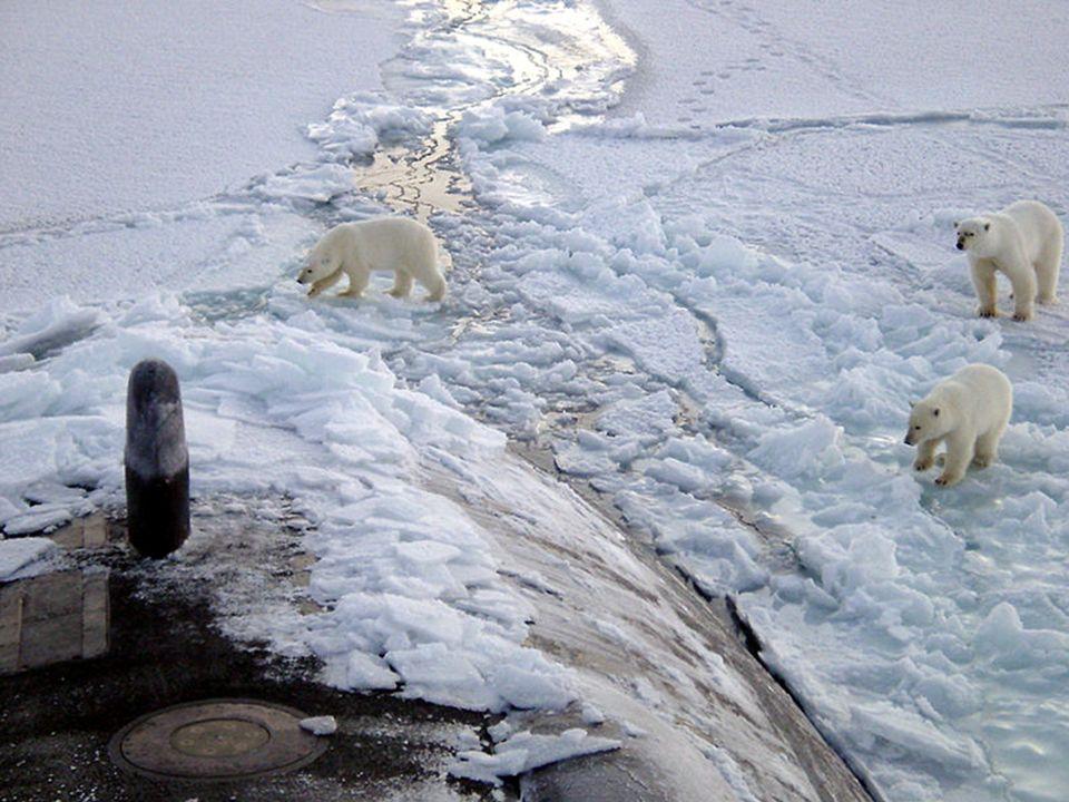 … et menacés ! http://laroyale.forum0.net/t1343-sous-marins- nucleaires-russes-une-catastrophe-en-devenir http://www.robindesbois.org/arctic/polar _st