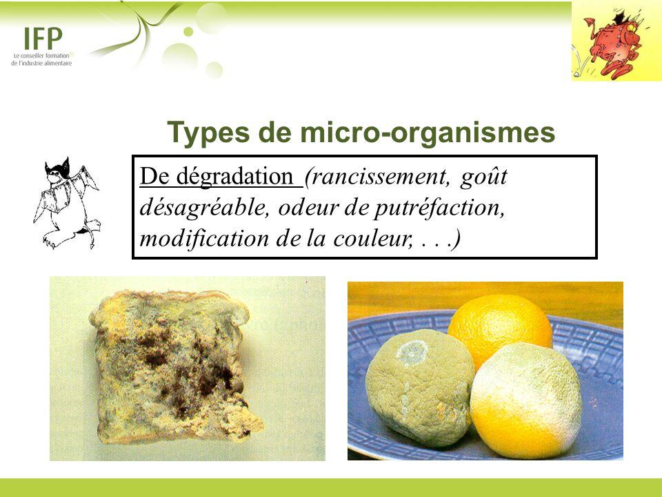 De dégradation (rancissement, goût désagréable, odeur de putréfaction, modification de la couleur,...) Types de micro-organismes