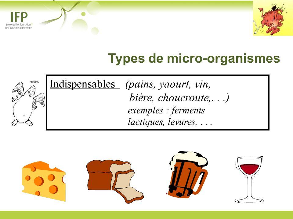 Indispensables (pains, yaourt, vin, bière, choucroute,...) exemples : ferments lactiques, levures,... Types de micro-organismes