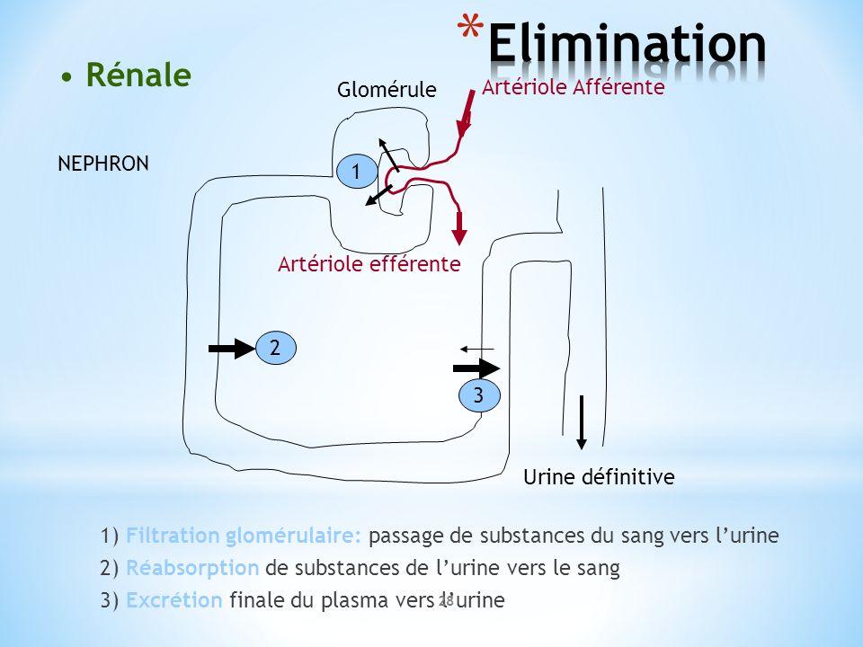 1) Filtration glomérulaire: passage de substances du sang vers lurine 2) Réabsorption de substances de lurine vers le sang 3) Excrétion finale du plas