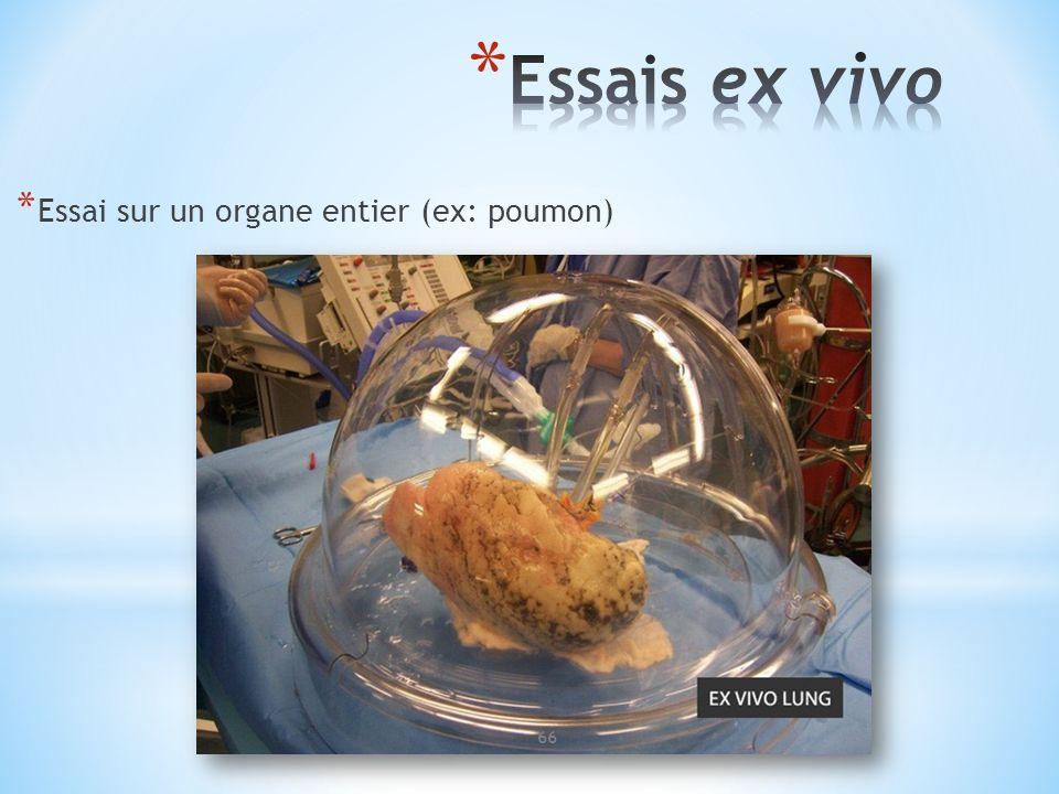 * Essai sur un organe entier (ex: poumon) 66