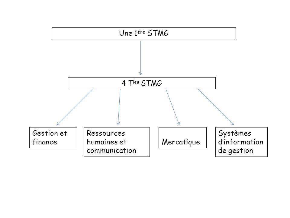 Une 1 ère STMG Gestion et financeMercatique Ressources humaines et communication Systèmes dinformation de gestion 4 T les STMG