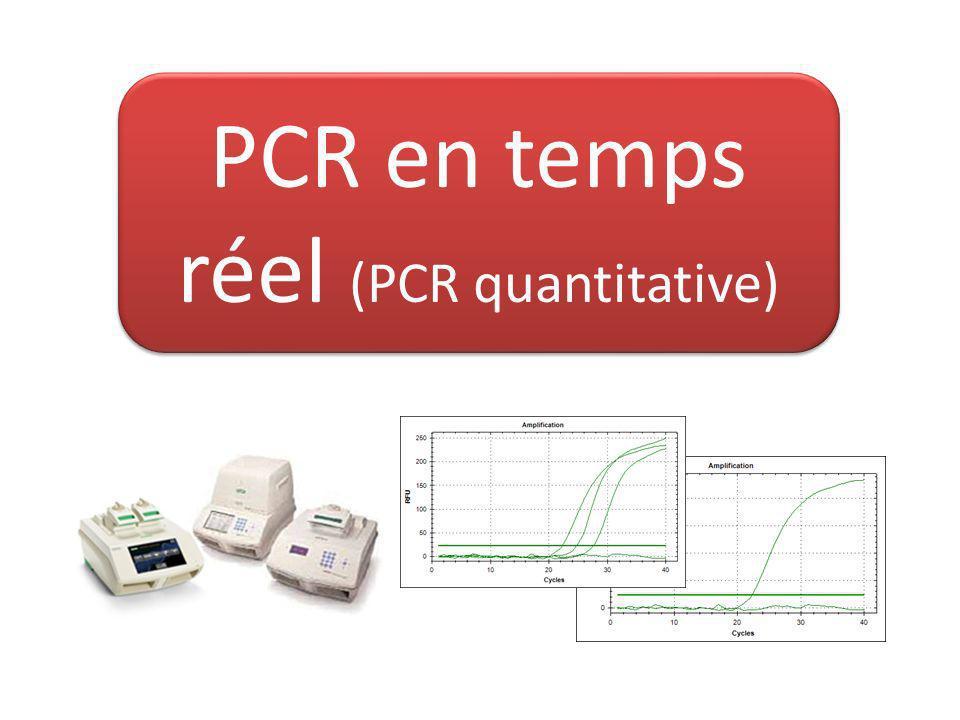 PCR en temps réel (PCR quantitative)