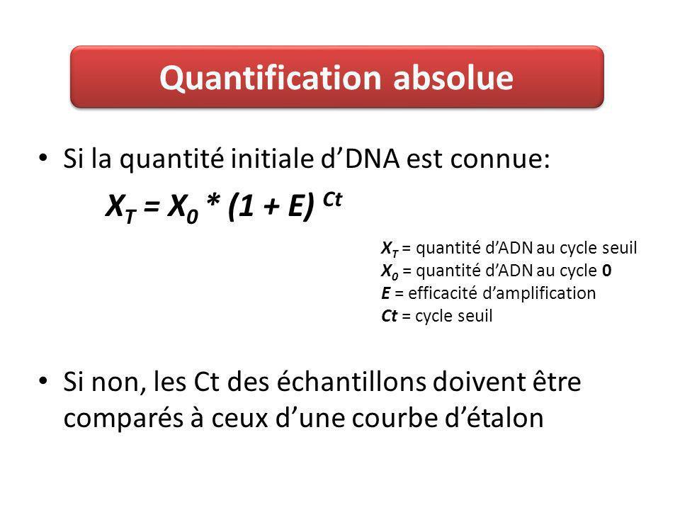 Si la quantité initiale dDNA est connue: X T = X 0 * (1 + E) Ct Si non, les Ct des échantillons doivent être comparés à ceux dune courbe détalon Quantification absolue X T = quantité dADN au cycle seuil X 0 = quantité dADN au cycle 0 E = efficacité damplification Ct = cycle seuil