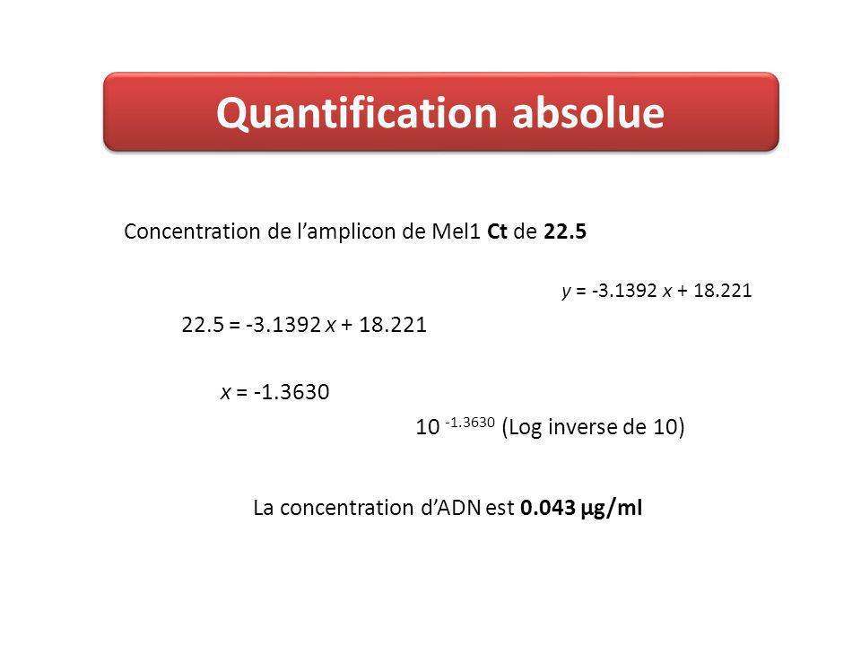 22.5 = -3.1392 x + 18.221 Concentration de lamplicon de Mel1 Ct de 22.5 x = -1.3630 La concentration dADN est 0.043 µg/ml 10 -1.3630 (Log inverse de 10) y = -3.1392 x + 18.221 Quantification absolue