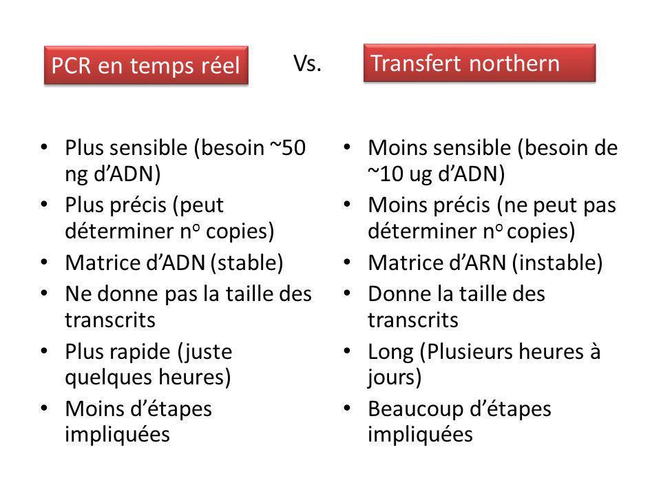 Plus sensible (besoin ~50 ng dADN) Plus précis (peut déterminer n o copies) Matrice dADN (stable) Ne donne pas la taille des transcrits Plus rapide (juste quelques heures) Moins détapes impliquées Moins sensible (besoin de ~10 ug dADN) Moins précis (ne peut pas déterminer n o copies) Matrice dARN (instable) Donne la taille des transcrits Long (Plusieurs heures à jours) Beaucoup détapes impliquées PCR en temps réel Transfert northern Vs.