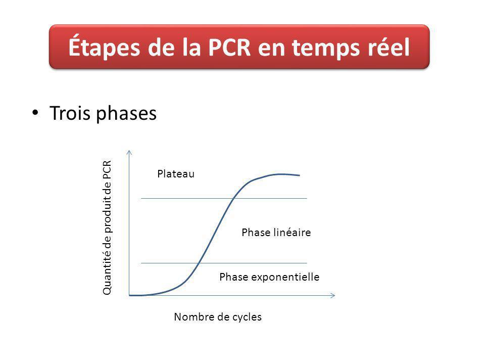 Trois phases Phase linéaire Plateau Phase exponentielle Nombre de cycles Quantité de produit de PCR Étapes de la PCR en temps réel