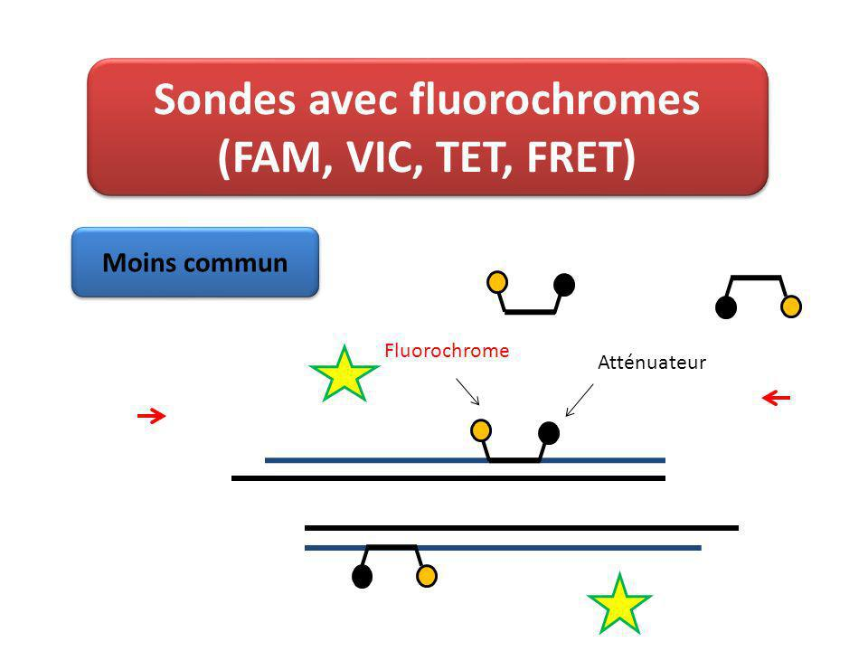 Sondes avec fluorochromes (FAM, VIC, TET, FRET) Fluorochrome Atténuateur Moins commun