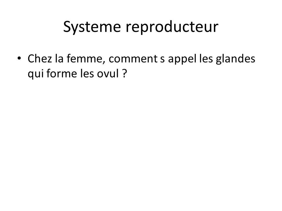 Systeme reproducteur Chez la femme, comment s appel les glandes qui forme les ovul ?