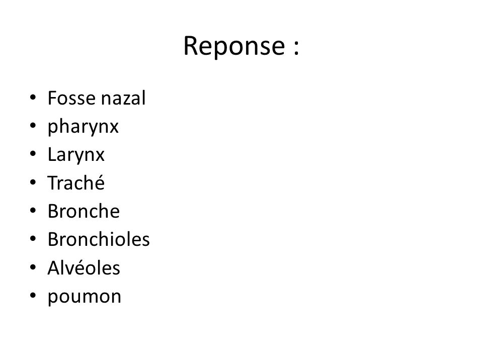 Reponse : Fosse nazal pharynx Larynx Traché Bronche Bronchioles Alvéoles poumon