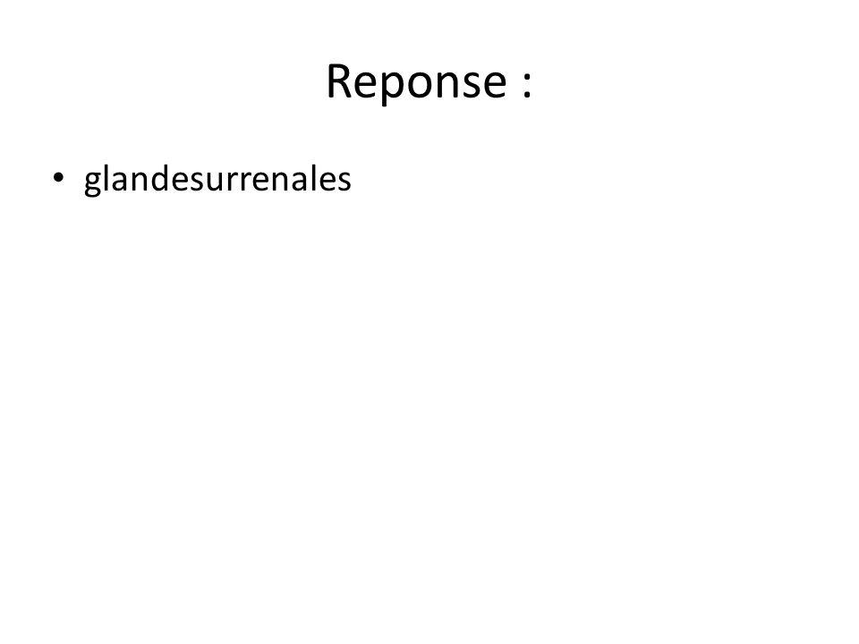 Reponse : glandesurrenales