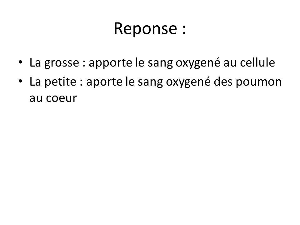 Reponse : La grosse : apporte le sang oxygené au cellule La petite : aporte le sang oxygené des poumon au coeur