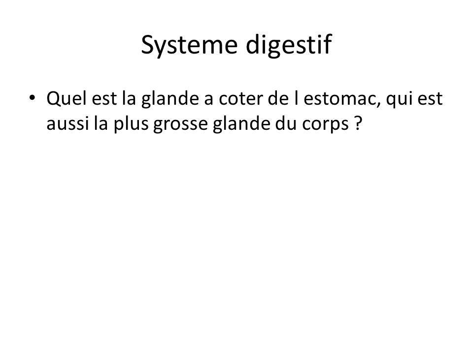Systeme digestif Quel est la glande a coter de l estomac, qui est aussi la plus grosse glande du corps ?