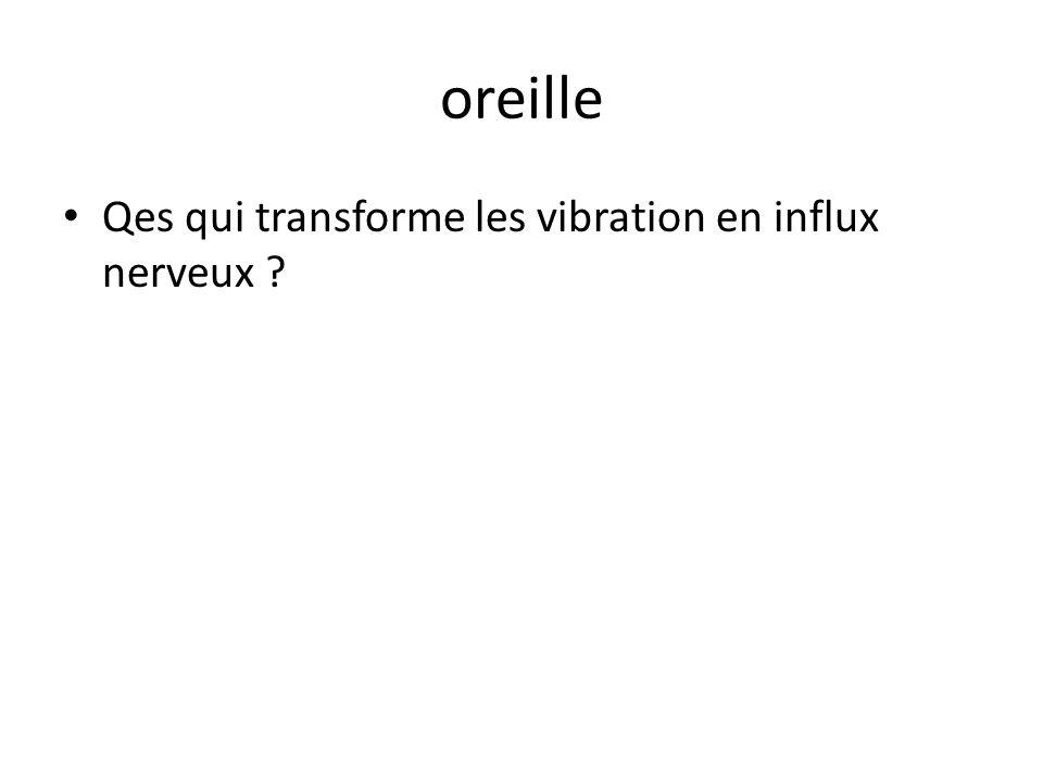 oreille Qes qui transforme les vibration en influx nerveux ?
