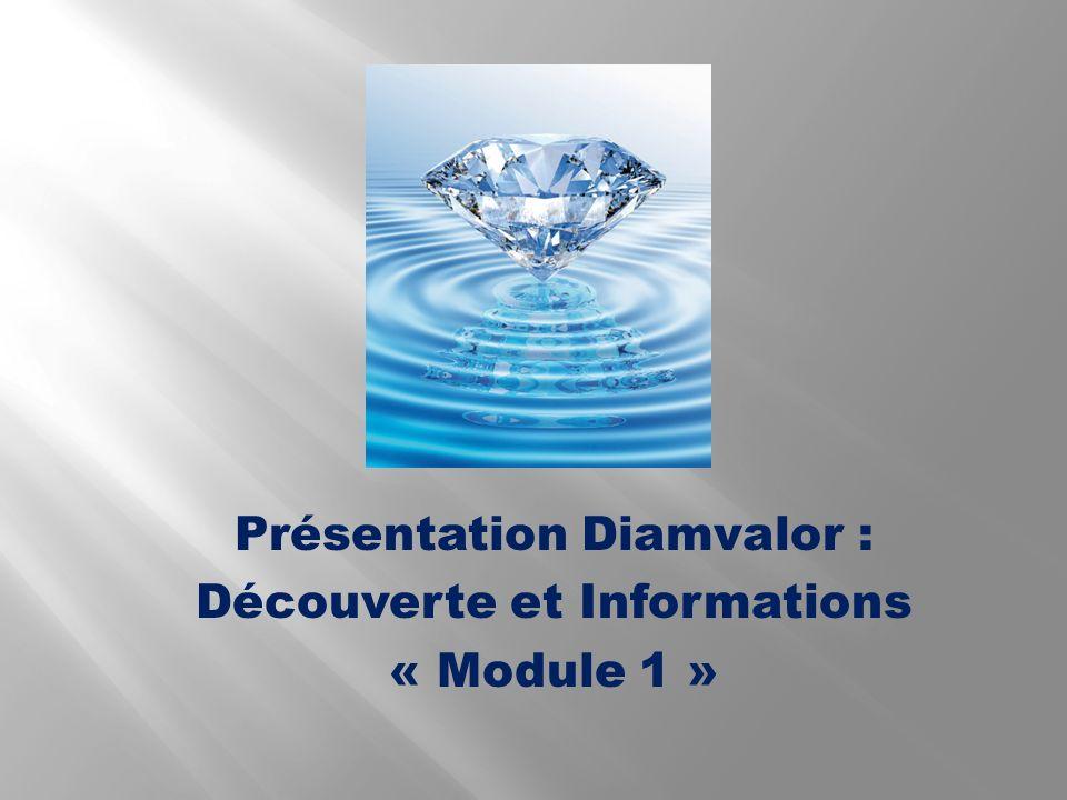 Présentation Diamvalor : Découverte et Informations « Module 1 »