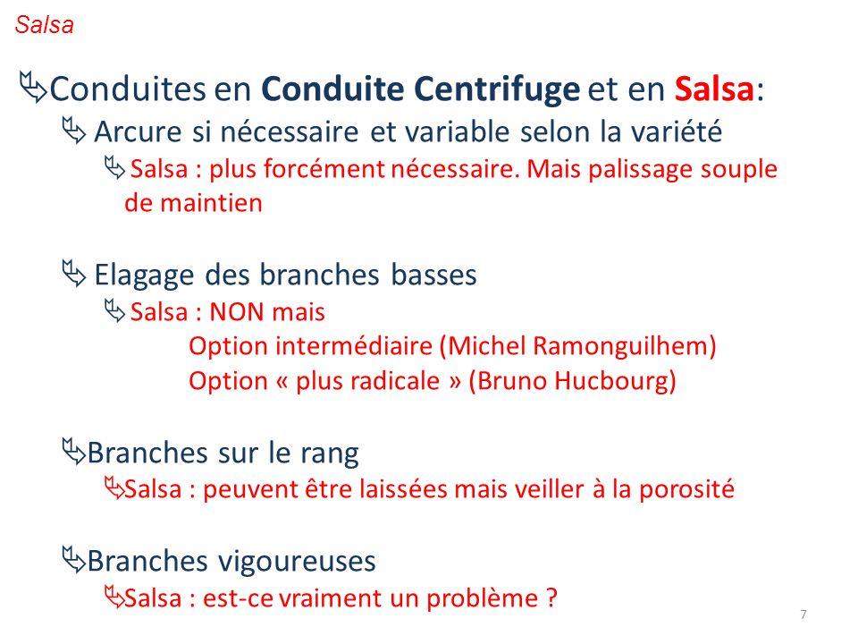7 Conduites en Conduite Centrifuge et en Salsa: Arcure si nécessaire et variable selon la variété Salsa : plus forcément nécessaire. Mais palissage so