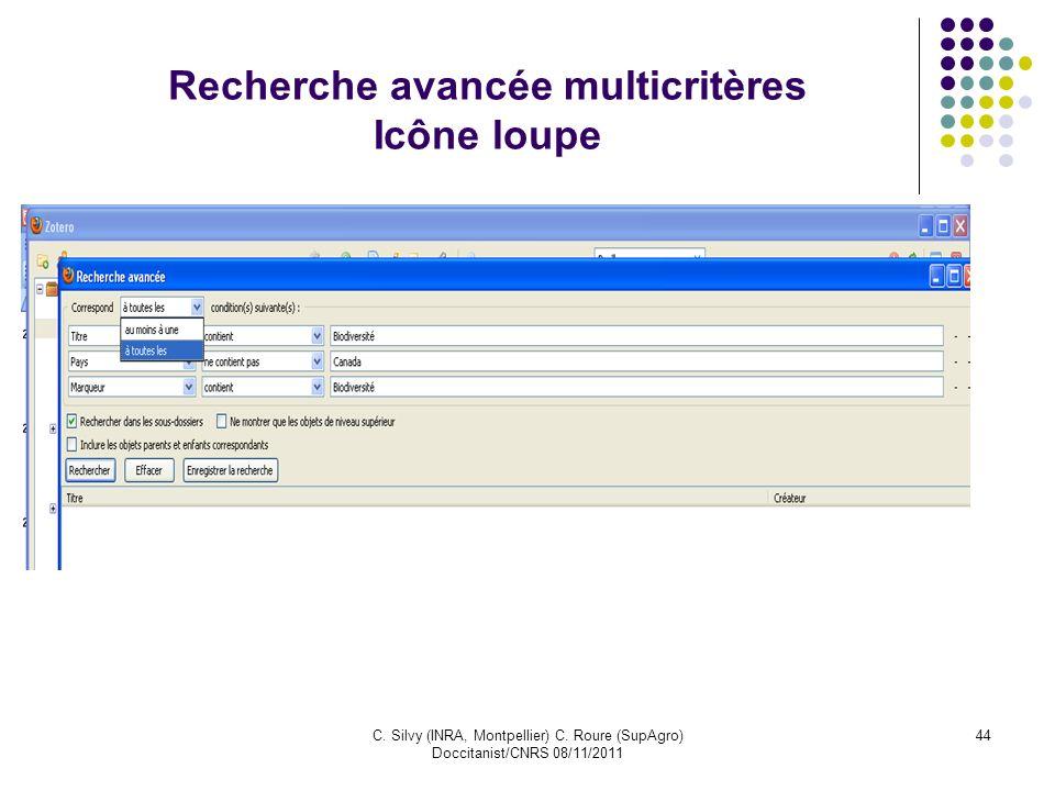 C. Silvy (INRA, Montpellier) C. Roure (SupAgro) Doccitanist/CNRS 08/11/2011 44 Recherche avancée multicritères Icône loupe