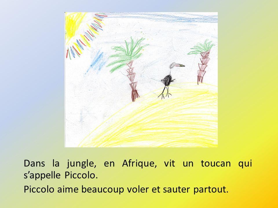 Dans la jungle, en Afrique, vit un toucan qui sappelle Piccolo. Piccolo aime beaucoup voler et sauter partout.