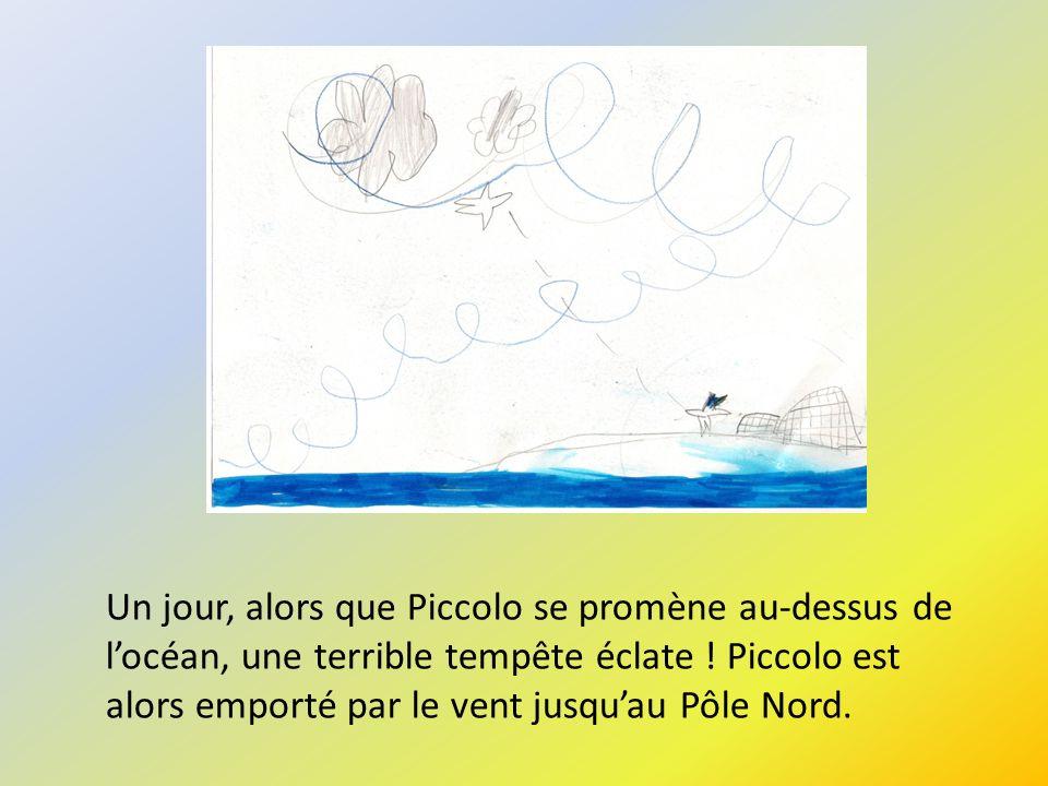 Un jour, alors que Piccolo se promène au-dessus de locéan, une terrible tempête éclate ! Piccolo est alors emporté par le vent jusquau Pôle Nord.