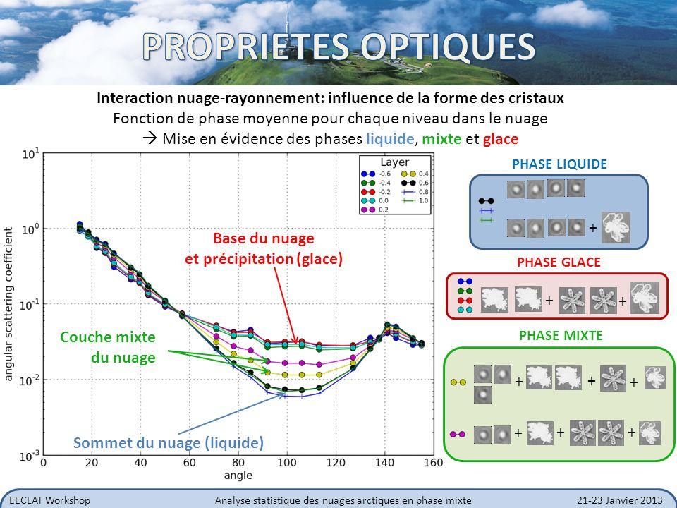 EECLAT WorkshopAnalyse statistique des nuages arctiques en phase mixte21-23 Janvier 2013 Interaction nuage-rayonnement: influence de la forme des cris