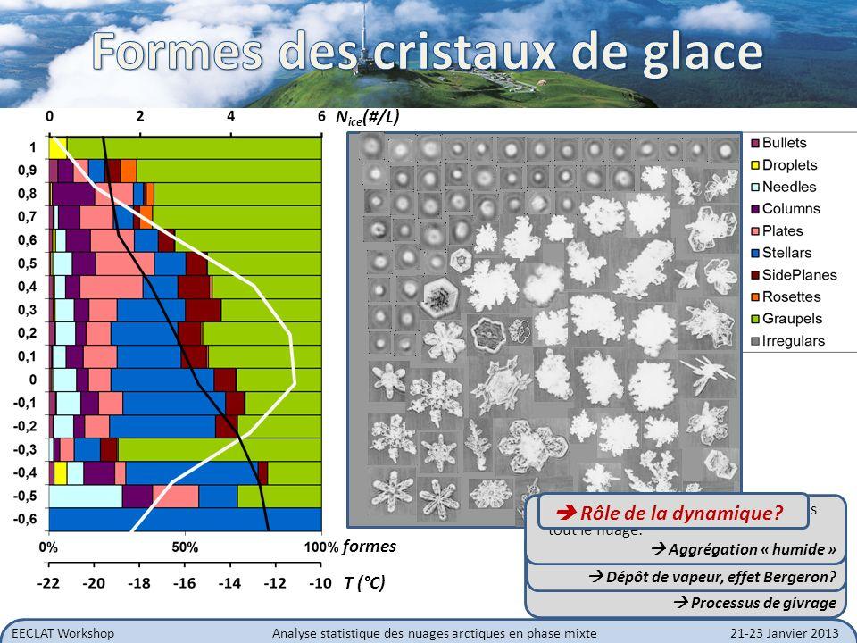 EECLAT WorkshopAnalyse statistique des nuages arctiques en phase mixte21-23 Janvier 2013 Interaction nuage-rayonnement: influence de la forme des cristaux Fonction de phase moyenne pour chaque niveau dans le nuage Mise en évidence des phases liquide, mixte et glace + + + + + + + + PHASE LIQUIDE PHASE GLACE PHASE MIXTE + Sommet du nuage (liquide) Base du nuage et précipitation (glace) Couche mixte du nuage