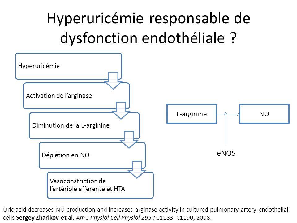 Hyperuricémie responsable de dysfonction endothéliale .