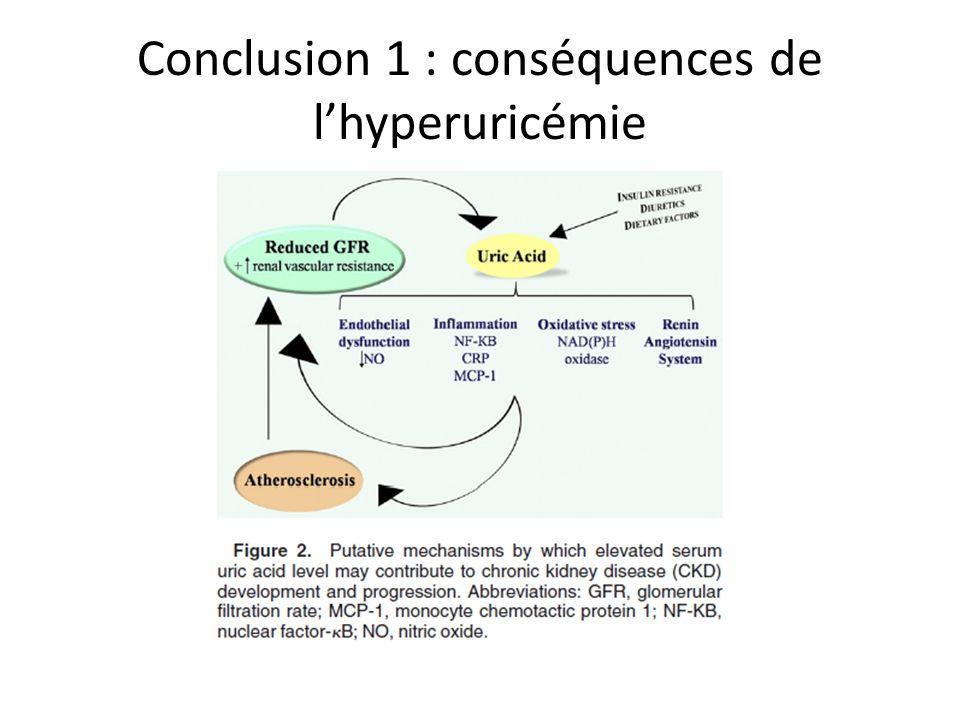 Conclusion 1 : conséquences de lhyperuricémie
