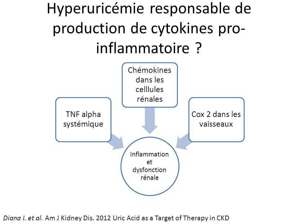 Hyperuricémie responsable de production de cytokines pro- inflammatoire .
