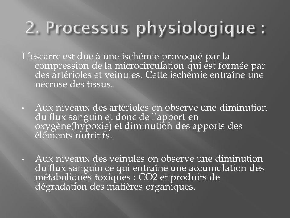 Lescarre est due à une ischémie provoqué par la compression de la microcirculation qui est formée par des artérioles et veinules.