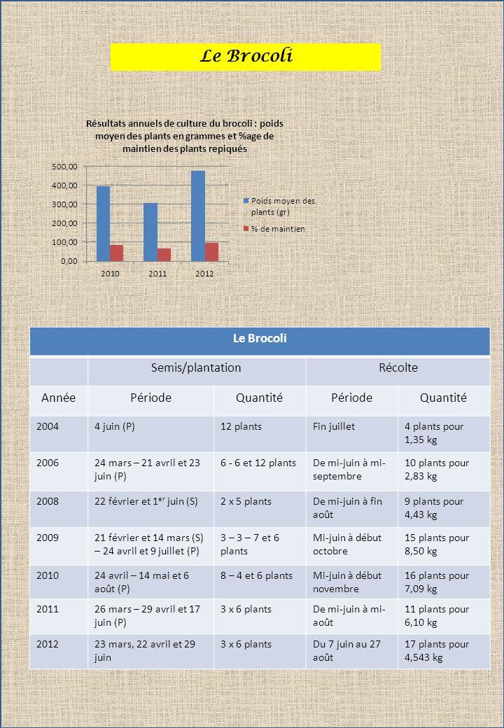 Le Brocoli Semis/plantationRécolte AnnéePériodeQuantitéPériodeQuantité 20044 juin (P)12 plantsFin juillet4 plants pour 1,35 kg 200624 mars – 21 avril