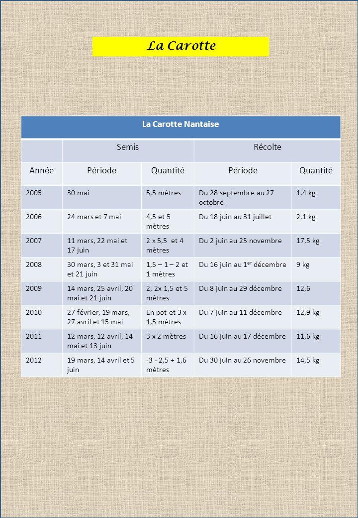 La Carotte La Carotte Nantaise SemisRécolte AnnéePériodeQuantitéPériodeQuantité 200530 mai5,5 mètresDu 28 septembre au 27 octobre 1,4 kg 200624 mars e