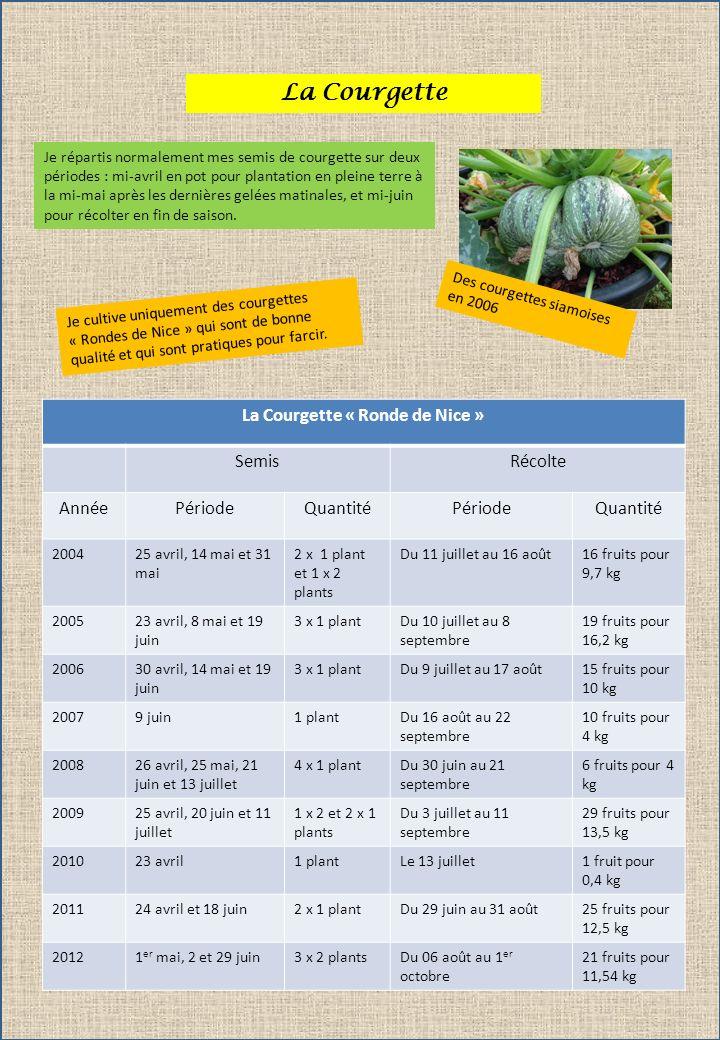 La Courgette Je répartis normalement mes semis de courgette sur deux périodes : mi-avril en pot pour plantation en pleine terre à la mi-mai après les
