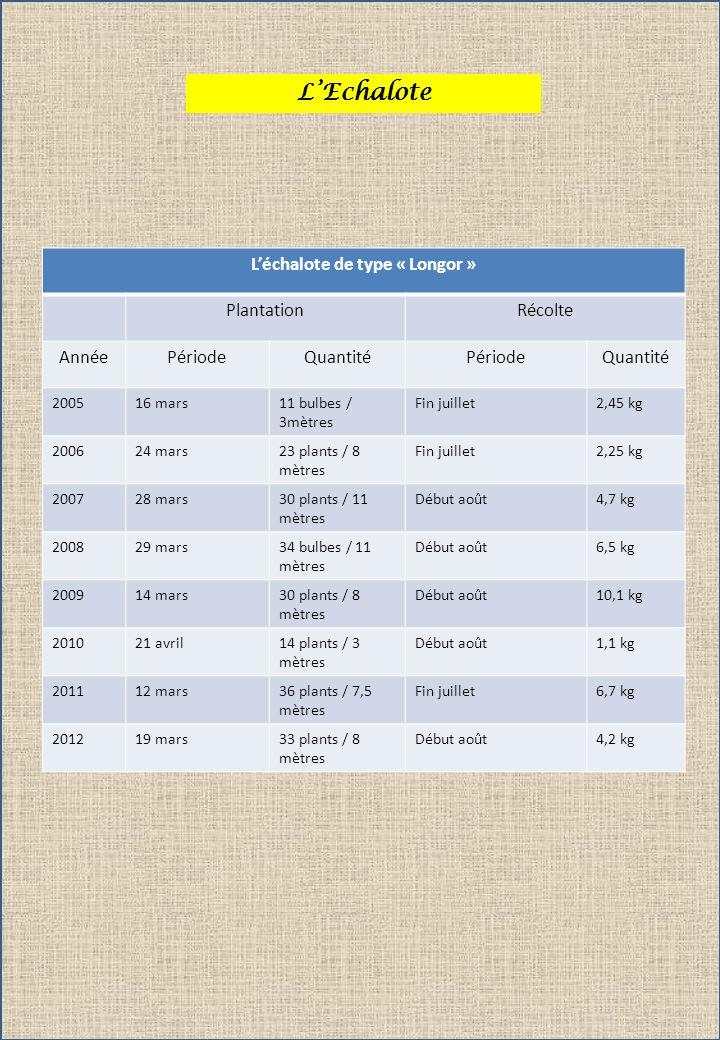 LEchalote Léchalote de type « Longor » PlantationRécolte AnnéePériodeQuantitéPériodeQuantité 200516 mars11 bulbes / 3mètres Fin juillet2,45 kg 200624