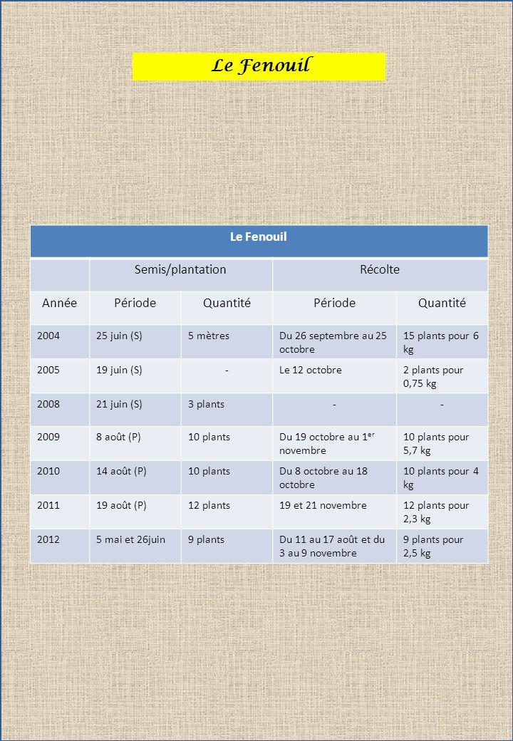 Le Fenouil Semis/plantationRécolte AnnéePériodeQuantitéPériodeQuantité 200425 juin (S)5 mètresDu 26 septembre au 25 octobre 15 plants pour 6 kg 200519