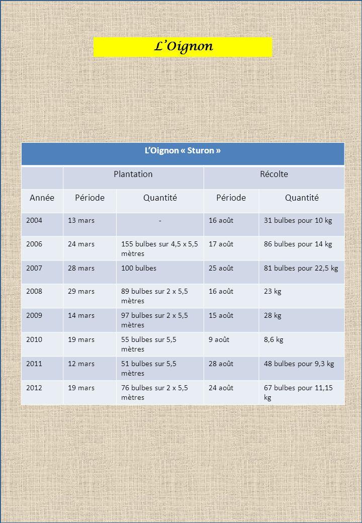 LOignon LOignon « Sturon » PlantationRécolte AnnéePériodeQuantitéPériodeQuantité 200413 mars-16 août31 bulbes pour 10 kg 200624 mars155 bulbes sur 4,5