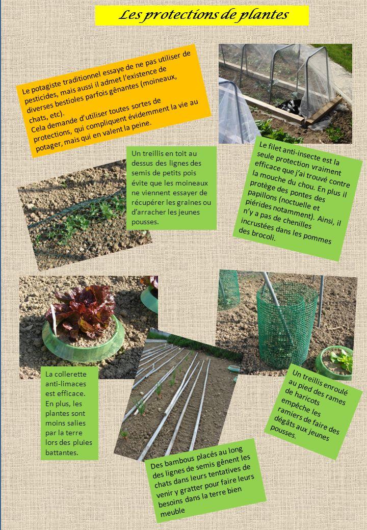 Les protections de plantes Le potagiste traditionnel essaye de ne pas utiliser de pesticides, mais aussi il admet lexistence de diverses bestioles par