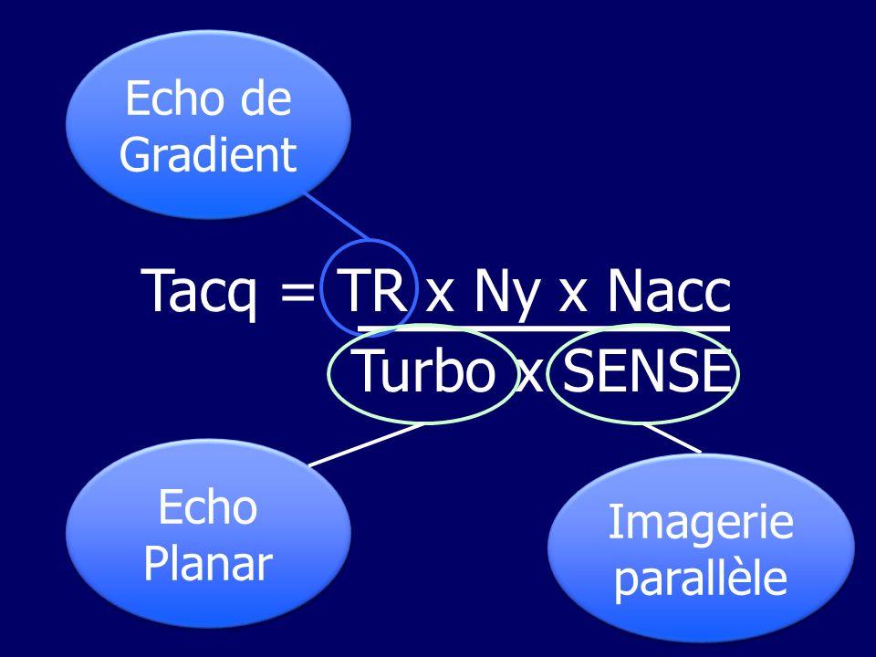 Echo de Spin Echo de Gradient Différences avec lécho de Spin Différences avec lécho de Spin –Angle de bascule 90° –Absence dimpulsion de 180° RF 90° Echo de gradient RF α 180°