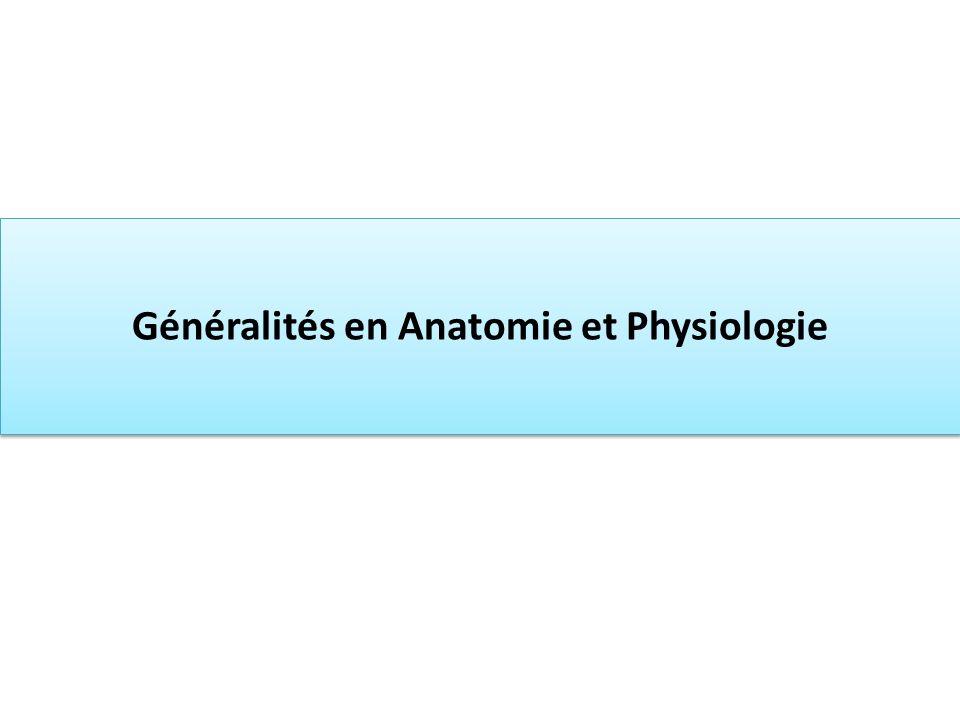 Généralités en Anatomie et Physiologie Généralités en Anatomie et Physiologie