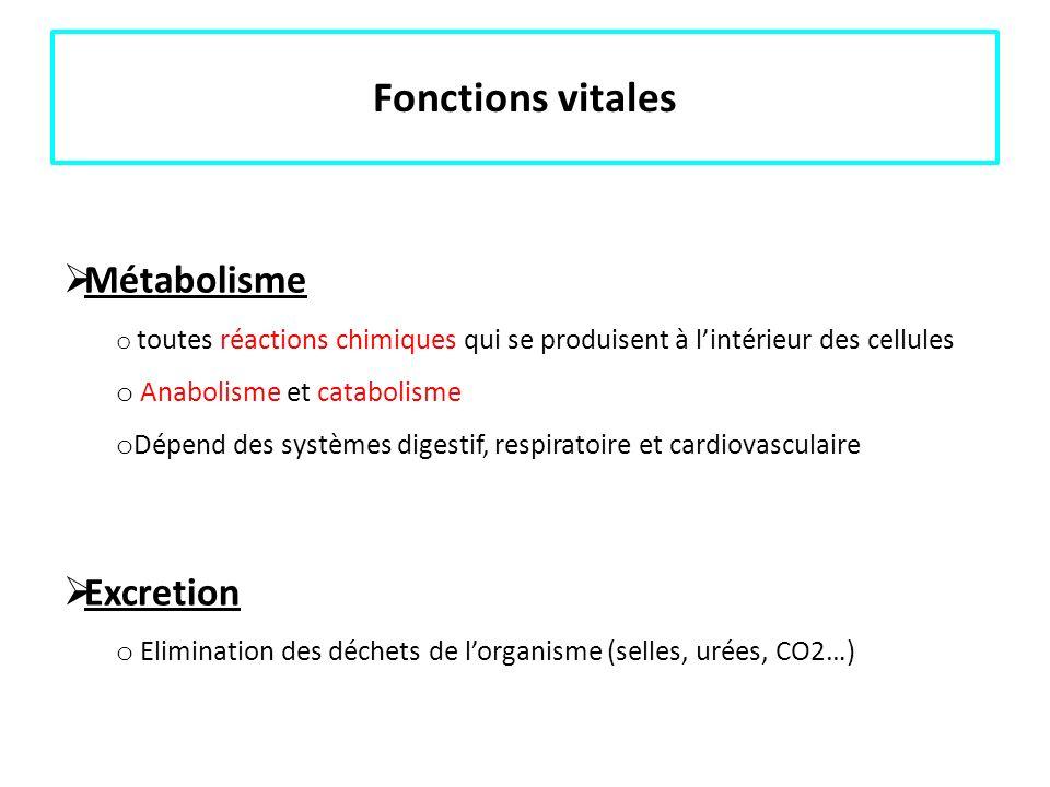 Fonctions vitales Métabolisme o toutes réactions chimiques qui se produisent à lintérieur des cellules o Anabolisme et catabolisme o Dépend des systèm