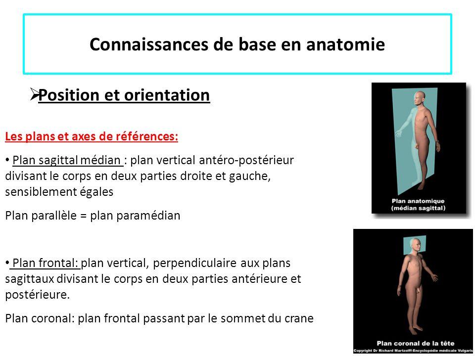 Connaissances de base en anatomie Position et orientation Les plans et axes de références: Plan sagittal médian : plan vertical antéro-postérieur divi