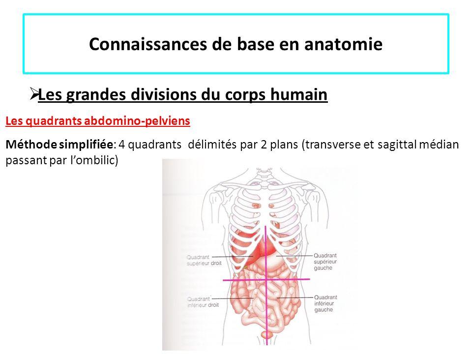 Connaissances de base en anatomie Les grandes divisions du corps humain Les quadrants abdomino-pelviens Méthode simplifiée: 4 quadrants délimités par