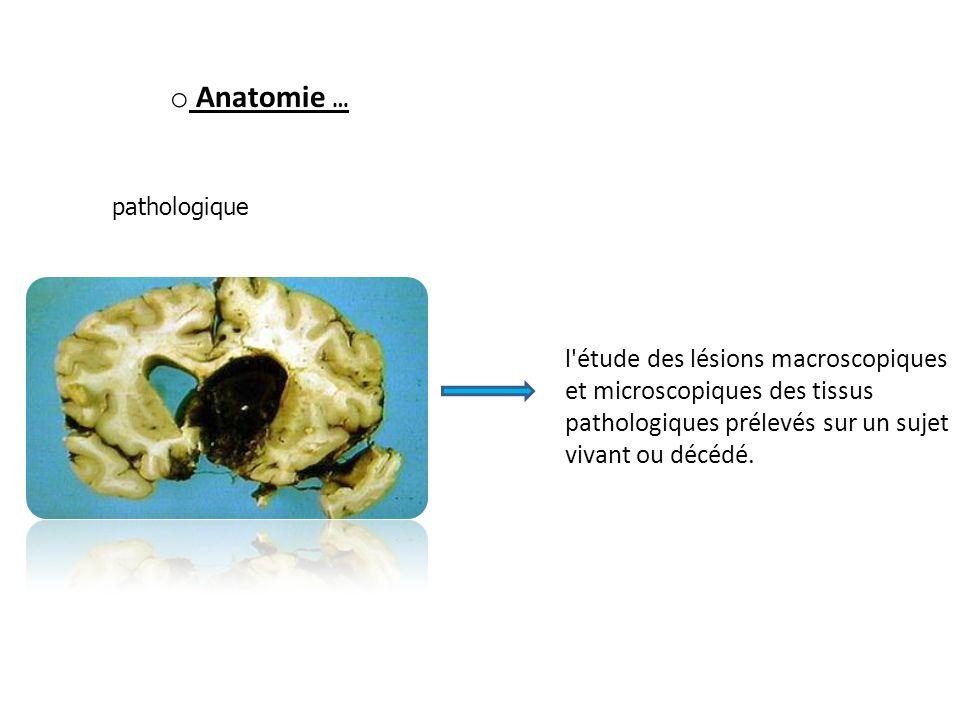 o Anatomie … pathologique l'étude des lésions macroscopiques et microscopiques des tissus pathologiques prélevés sur un sujet vivant ou décédé.