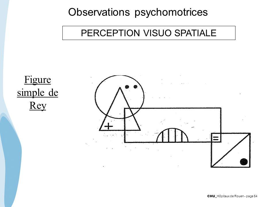 CHU _Hôpitaux de Rouen - page 54 Observations psychomotrices PERCEPTION VISUO SPATIALE Figure simple de Rey