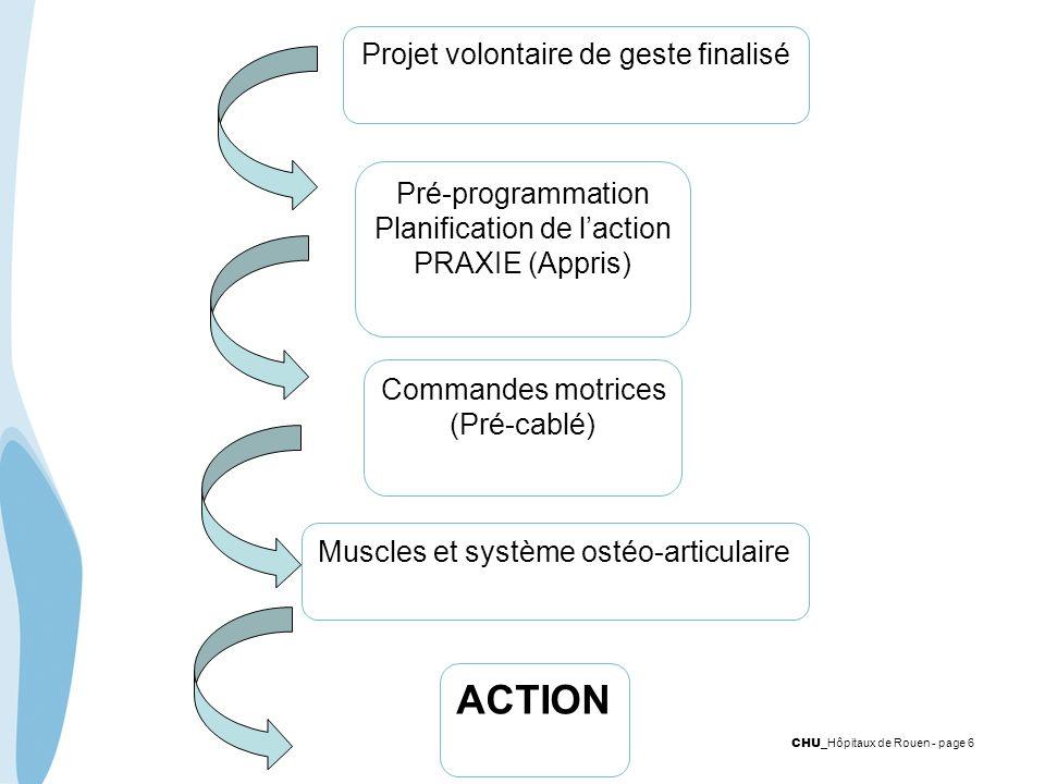 CHU _Hôpitaux de Rouen - page 6 Pré-programmation Planification de laction PRAXIE (Appris) Commandes motrices (Pré-cablé) Muscles et système ostéo-art