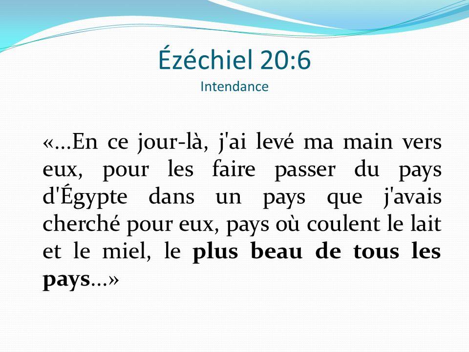Ézéchiel 20:6 Intendance «...En ce jour-là, j'ai levé ma main vers eux, pour les faire passer du pays d'Égypte dans un pays que j'avais cherché pour e