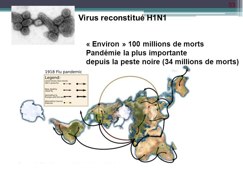 53 Virus reconstitué H1N1 « Environ » 100 millions de morts Pandémie la plus importante depuis la peste noire (34 millions de morts)
