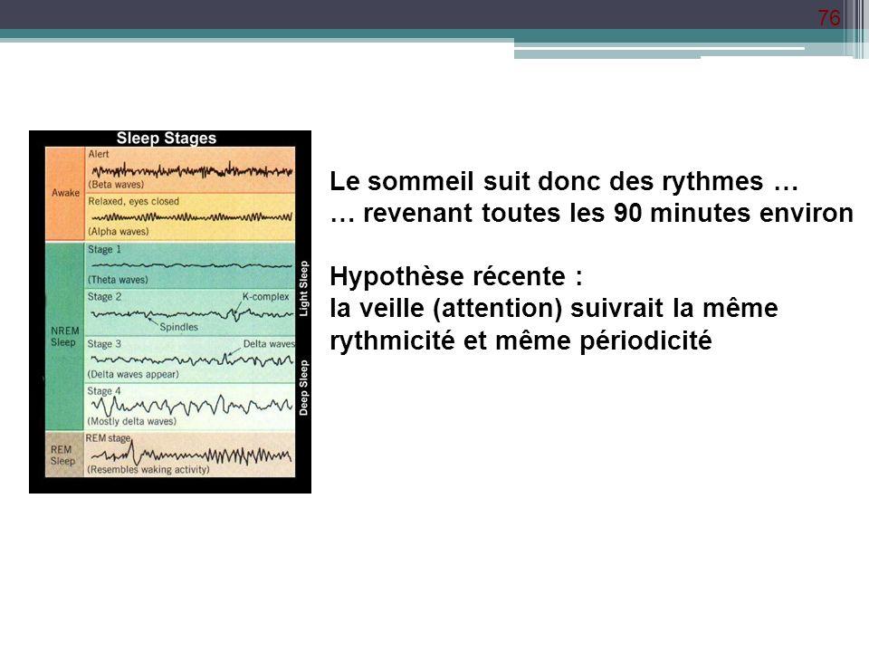 76 Le sommeil suit donc des rythmes … … revenant toutes les 90 minutes environ Hypothèse récente : la veille (attention) suivrait la même rythmicité e