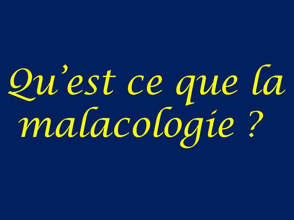 Quest ce que la malacologie ?
